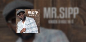 Mr. Sipp Knock A Hole In It slider